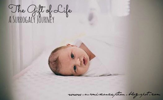 the-gift-of-life-a-surrogacy-journey happyhumanpacifier.com
