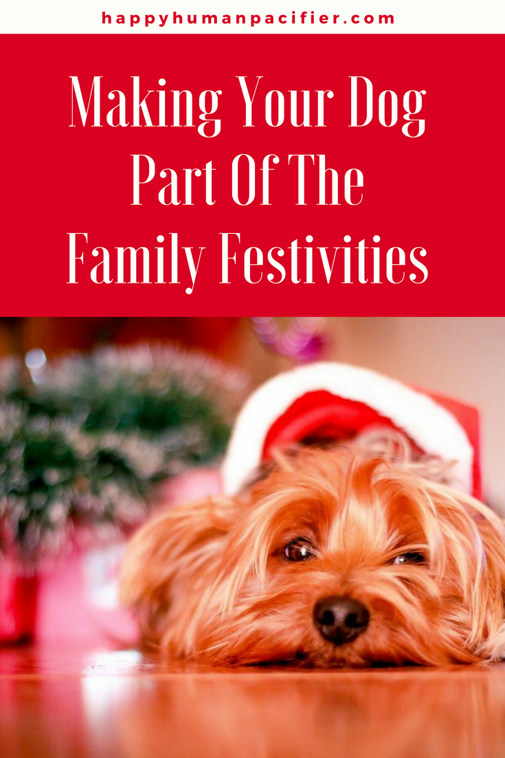 Are you planning to include your dog in your festivities? | dogsandtheholidays |