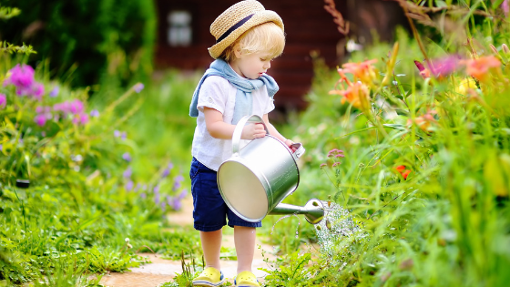 How to Spruce Up Your Garden (on a Tight Budget) | Happy Human Pacifier